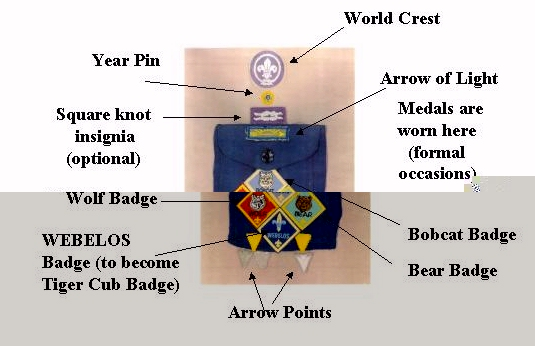 Graphic from template - front left side (with several program year pins)