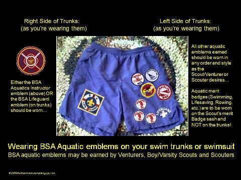 Aquatics Badges and how to wear them....
