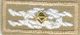 Old Scoutmasters' Award of Merit knot emblem with device