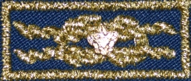Unit Leader Award of Merit knot emblem with device